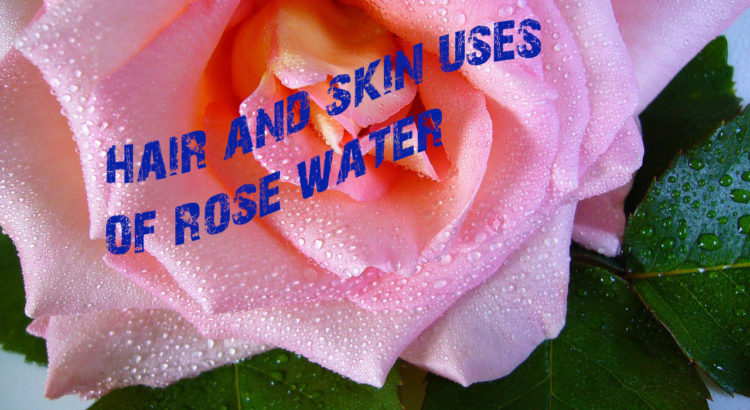 Uses of rose water | Mololo cosmetics