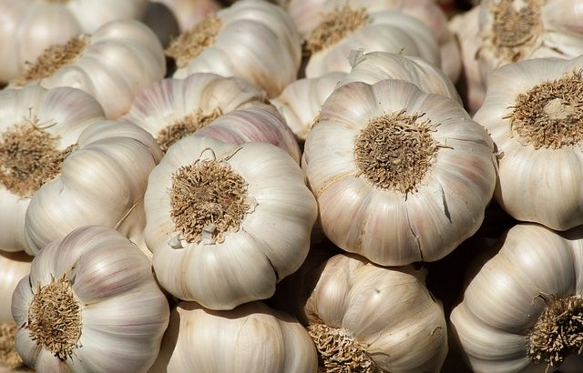 uses of garlic | Mololo cosmetics