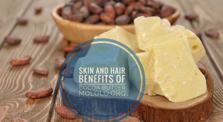 skin and hair benefits of cocoa butter | Mololo cosmetics