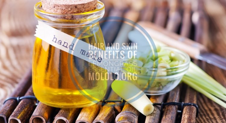 Lemongrass Essential Oil | Mololo Cosmetics