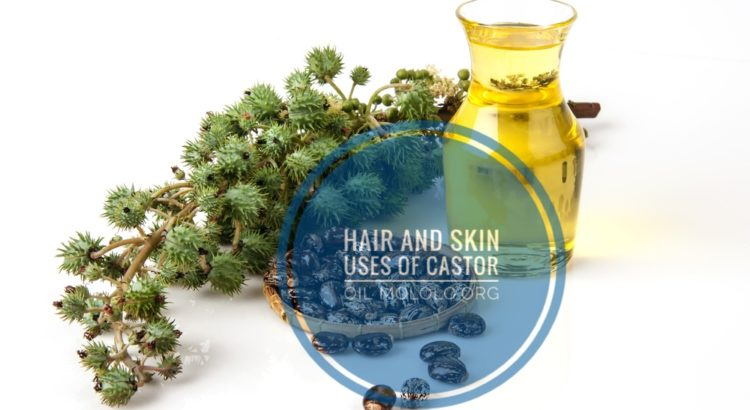 Hair and skin uses of castor oil   Mololo cosmetics