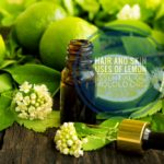 6 Hair and Skin Uses of Lime Essential Oil You Should Know