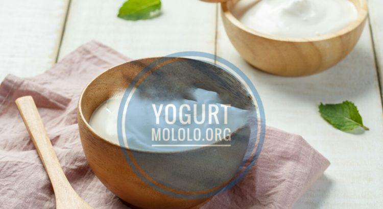 yogurt | mololo.org
