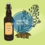 9 Hair and Skin Uses of Camelina Oil You Should Know