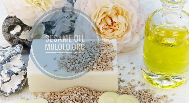 sesame oil | mololo.org