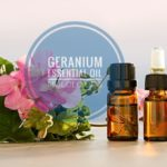 13 Skin and Hair Uses of Geranium Essential Oil You Should Know