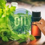 11 Skin and Hair Uses of Basil Essential Oil You Should Know
