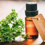 Skin and Hair Benefits of Citronella Essential Oil You Should Know