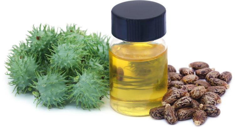 castor oil | Mololo cosmetics