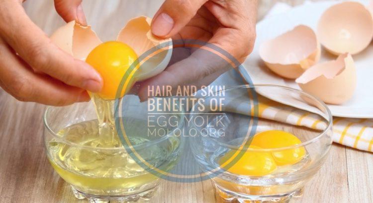 uses of egg yolk | Mololo Cosmetics