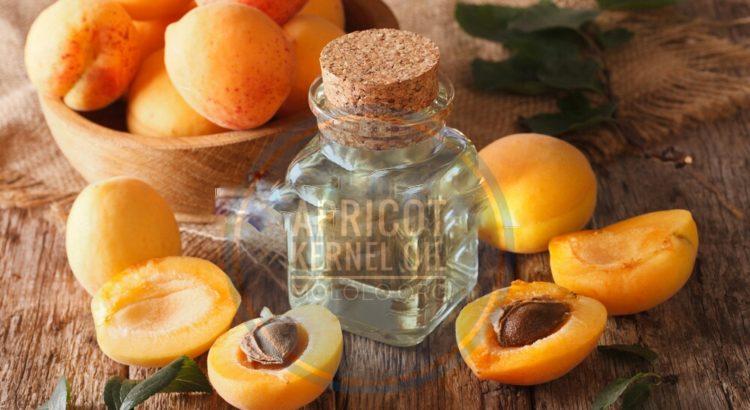 Apricot Kernel Oil | Mololo.org