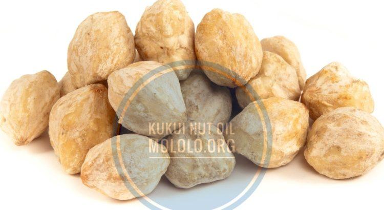 Kukui Nut Oil | mololo.org