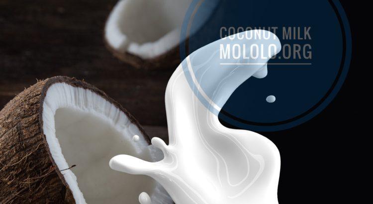 coconut milk | mololo.org