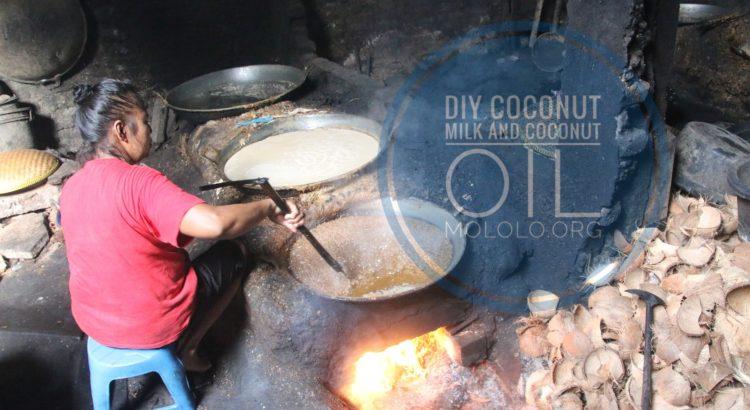 diy coconut milk and coconut oil | mololo.org