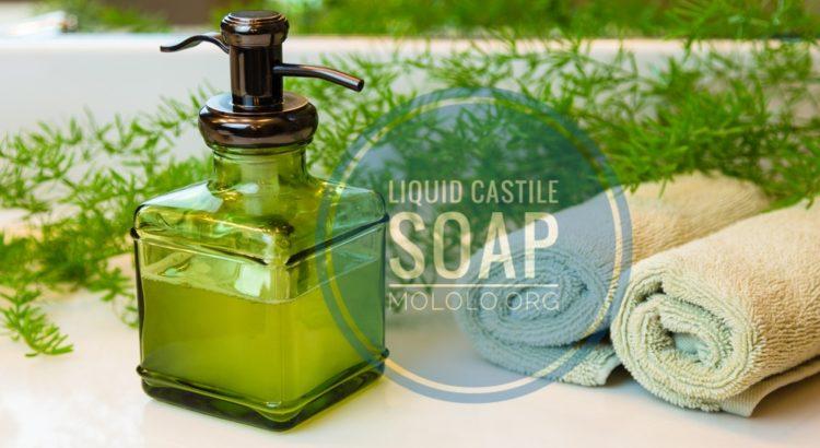 castile soap | mololo.org